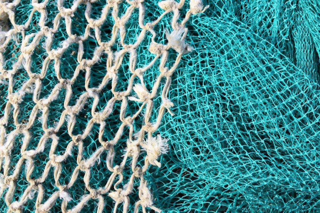 lignjolovac.com - kako izvući lignju iz mora